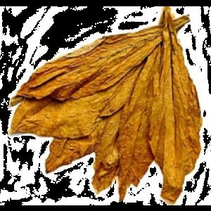 Aromas Tabaquiles